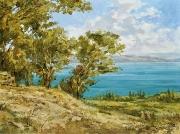 Над Галилейским морем. (2015 г) 60х80 (холст, масло)